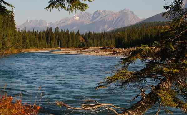 WEST-COAST Kanada Kootenay National Park 63128911